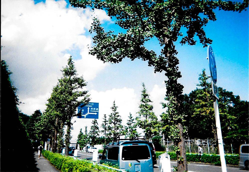2015-09 Tokyo, Yoyogi Stadium Fujicolor 1600 Hi-speed